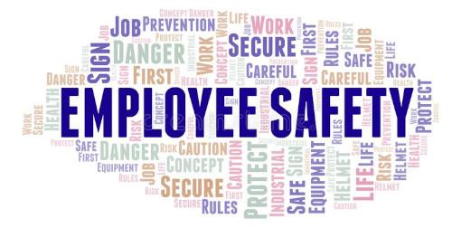 employee safe image